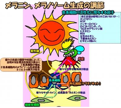 20037image18