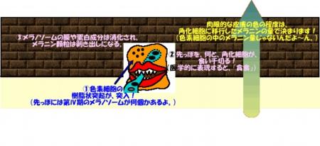 20037image19