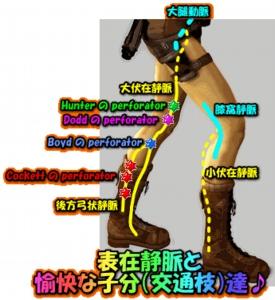 image784
