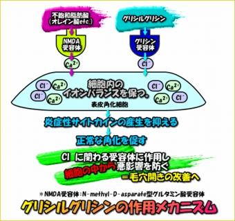 image1032