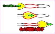 image1046