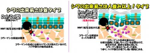 2014111image16-2