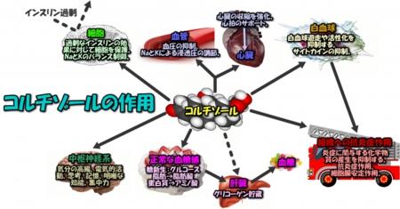 201504image11-2