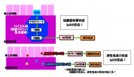 201209image9
