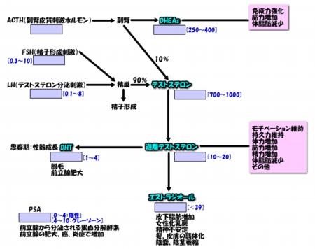 2014071image1