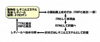 image1086