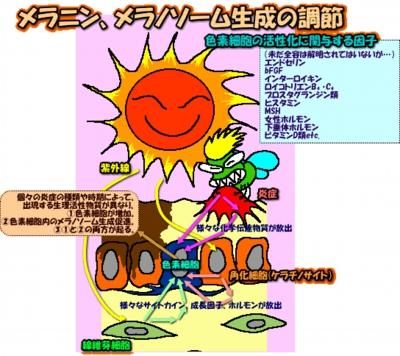 200502image323