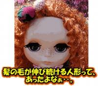 200509image426