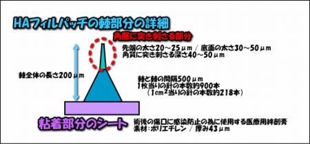 image1132