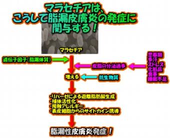 image118