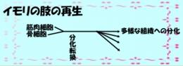 200405image381