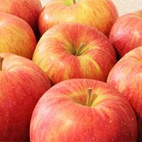 【第7回】 にんじんリンゴジュース
