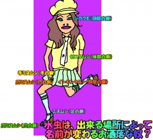 image211
