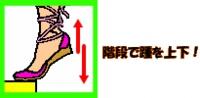 image234