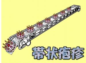 image513