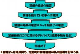 image544