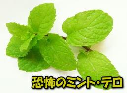 image239