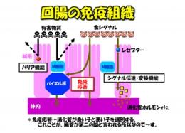2012092 image1-2