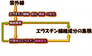 200404image109.gif