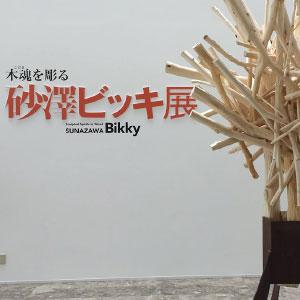 砂澤ビッキという彫刻家
